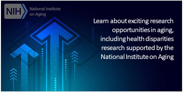Learn about exciting research opportunities in aging, including health disparities research supported by the   National Institute on Aging